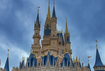 Disney World! / by Casey Fields