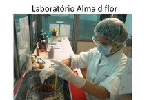 Laboratório / Onde produzimos os nossoa cosméticos