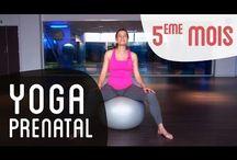Yoga elo