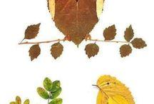 Tvoreni z listu