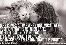 Animals and their rights / Love animals, they always make me smile