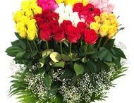 Send flowers to Delhi / We are local florists in Delhi to deliver fresh flowers and cakes to any part of Delhi. We deliver rose, lily, orchids, gerberas and carnations to Delhi within 4 to 5 hours