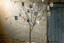 Photo Trees