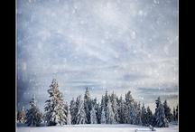 Winter / by Nancy Kroeker Boothe