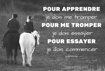 citation cheval