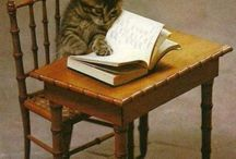 Cat is reading book.