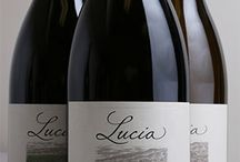 our wines / We produce wines under the Pisoni & Lucia wine labels from three vineyards in the Santa Lucia Highlands: