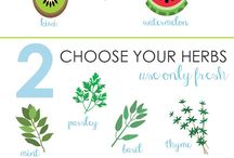 Health and Weight Loss Meals and Drinks