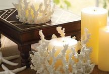 Coral and drift wood center piece