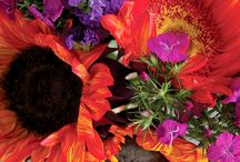 Pretty Posies / by Diana Howes