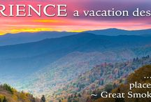 Hotels in the Great Smoky Mountains / Find the perfect room to kick back in the Great Smoky Mountains!