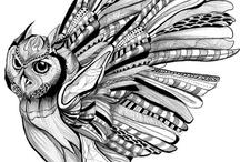 Иллюстрации сов
