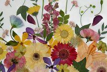 Bloemenliefde