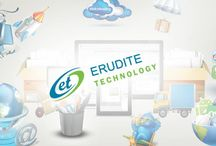 Erudite Technology / A Professional Web Development Company India, Mobile App Development Company India, PHP Development, seo company india , web design india, hire php developers.