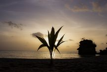 Photography in St Lucia / paradise