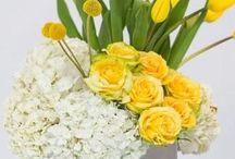 Цветы композиции
