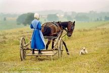 Amish / Amish Life