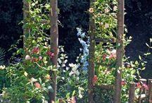 steccati da giardino