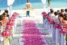 Wedding Venues / 0
