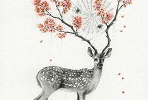 Lovely DeerS