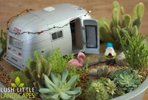 Miniature Gardens / I used to love making mini gardens when I was a child ..