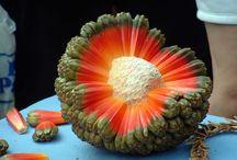 #exotic fruit#
