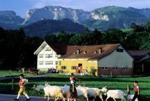 Appenzell Inn-to-Inn Tour