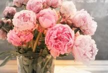 I love flowers / Fleurs