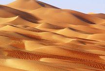 Desert project