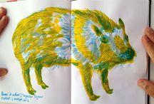Drawing/sketchbook