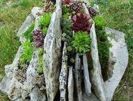 Kivikkoideoita - Rock garden ideas