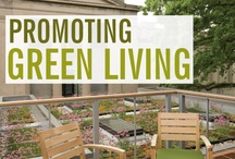 Green Living / by Cleano Universal Concentrated Green Cleaner
