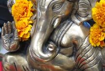 India Allure