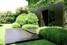 udvar, kert, növény