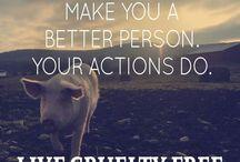 Cruelty-Free Quotes