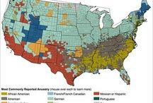 Populacje