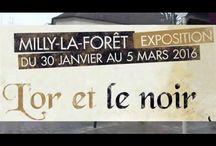 Expositions sur la ville de Milly-la-Forêt