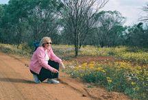 Goldfields & Esperance Region