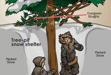 Shelters