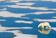 Climate - Smart Publishing Houses