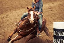 Barrel Racing and Rodeo