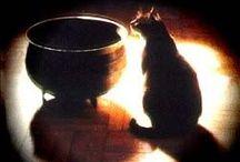 Pagan... / by Alana Barone-Jackson