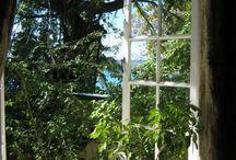 Door het raam...