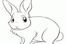 omalovánka - zvířátka