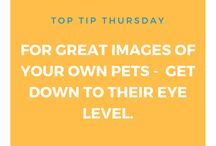Top Tip Thursdays - Photography / Here are some tips I share from my Rachel Bryant Photography Facebook page.   www.facebook.com/rbphotography88