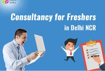 Consultancy for Freshers in Delhi NCR
