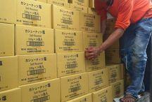 Exporting to Japan April 08 2014 / Hạt điều Vietnuts - lô 08/4/2014 Vietnuts exports cashew to Japan #honeycashew #saltedcashew #vietnuts