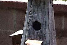 Fuglehus