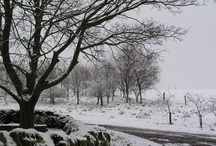Derbyshire Self Catering Holiday Cottages.