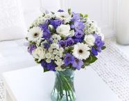 Colour Your Day / Colour Your Day with Flowers.ie